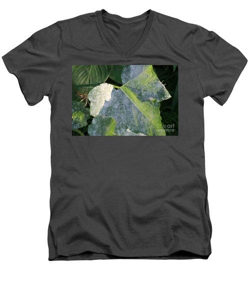 Calming Leafy Glade Men's V-Neck T-Shirt
