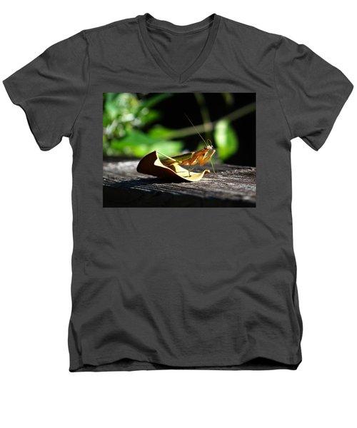 Leafy Praying Mantis Men's V-Neck T-Shirt