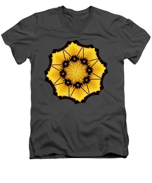 Leafy Kaleidoscope 2 Men's V-Neck T-Shirt