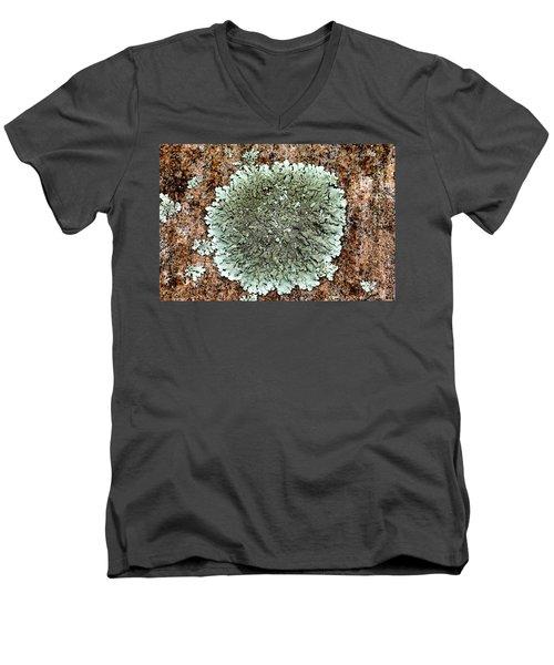 Leafy Lichen Men's V-Neck T-Shirt