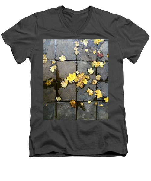 Leaves On Slate Men's V-Neck T-Shirt