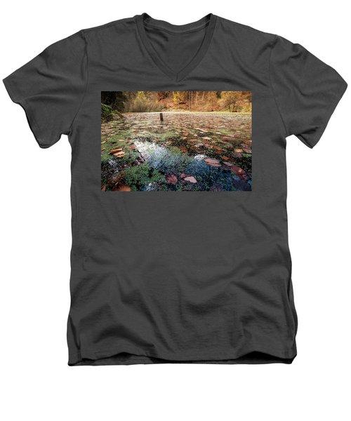 Leaves On The Lake Men's V-Neck T-Shirt
