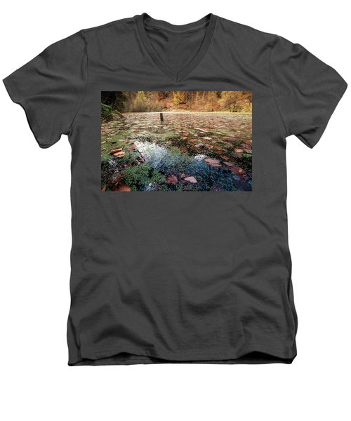 Leaves On The Lake Men's V-Neck T-Shirt