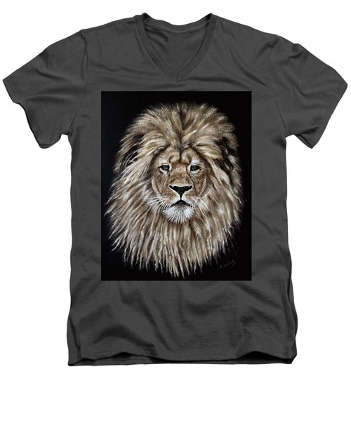 Leonardo Men's V-Neck T-Shirt by Teresa Wing