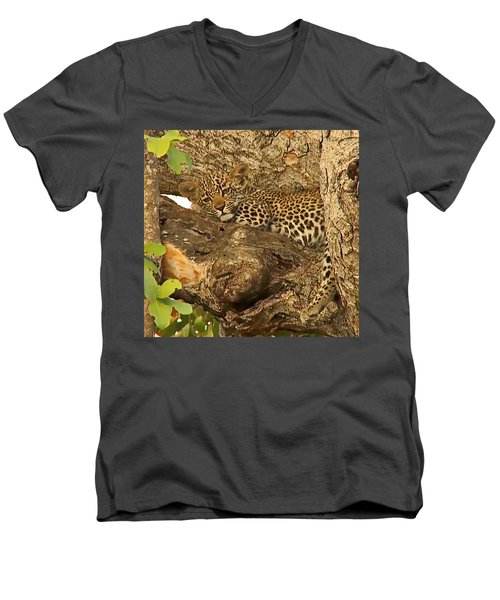 Leopard Cub Men's V-Neck T-Shirt