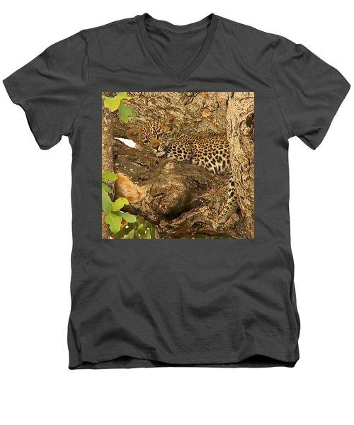 Leopard Cub Men's V-Neck T-Shirt