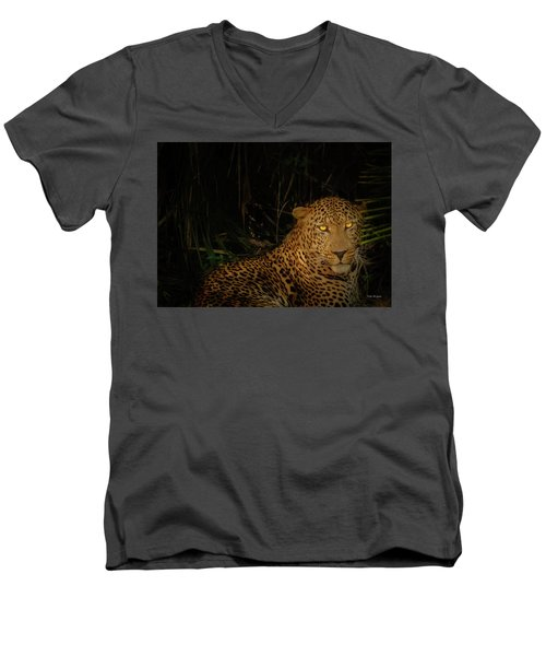 Leopard Hiding Men's V-Neck T-Shirt