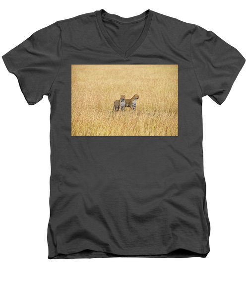 Leopard Pair Men's V-Neck T-Shirt