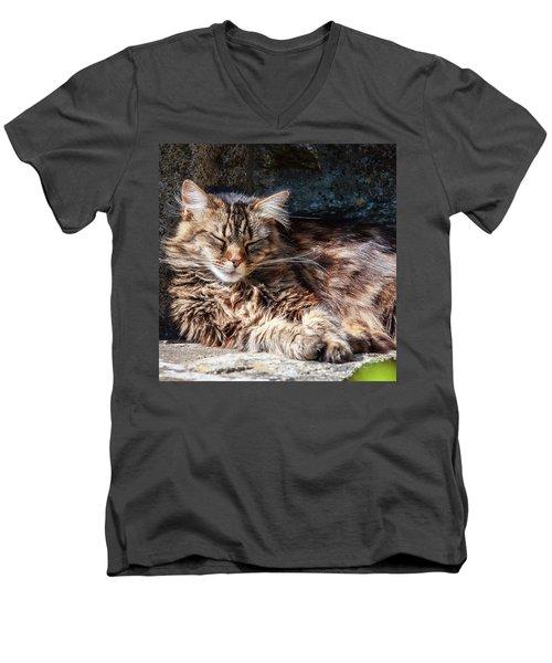 Let Me Sleep... Men's V-Neck T-Shirt