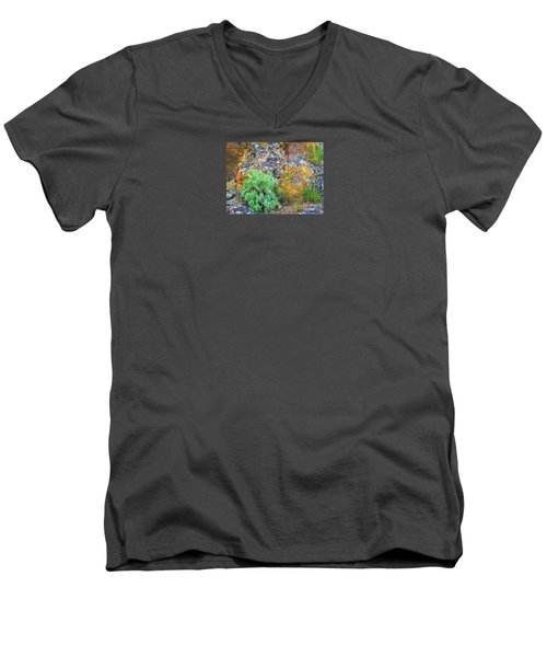 Lichen Rainbow   Men's V-Neck T-Shirt