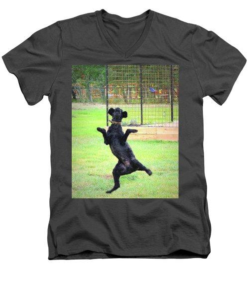 Life Is Beautiful Men's V-Neck T-Shirt