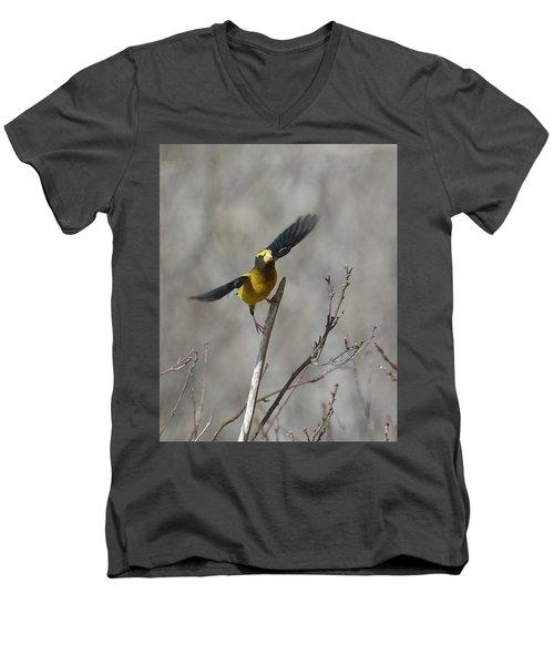 Liftoff-male Evening Grosbeak Men's V-Neck T-Shirt