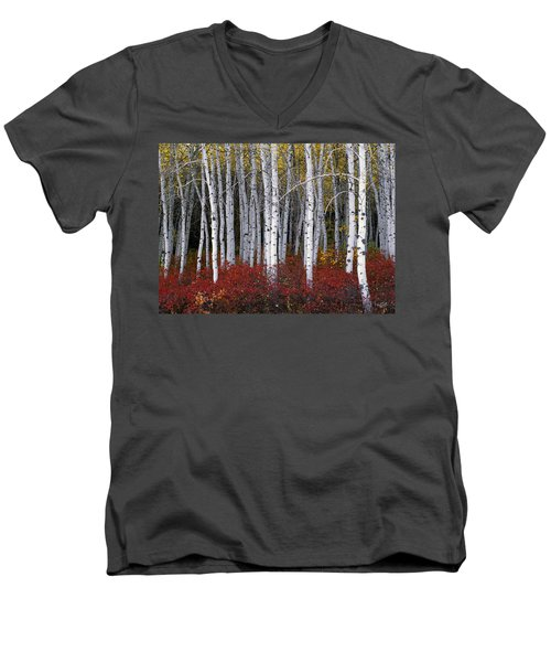 Light In Forest Men's V-Neck T-Shirt