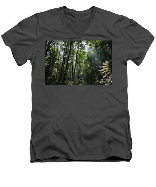 Light In The Forest Men's V-Neck T-Shirt