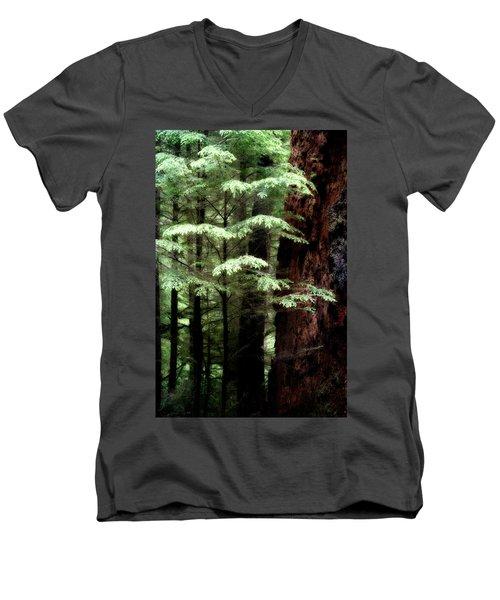 Light On Trees Men's V-Neck T-Shirt