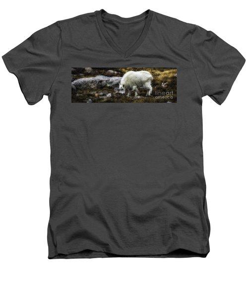 Lil' Kid Goat  Men's V-Neck T-Shirt