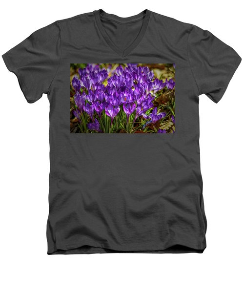 Lilac Crocus #g2 Men's V-Neck T-Shirt by Leif Sohlman