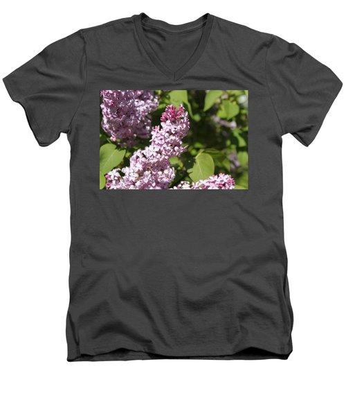 Lilacs 5552 Men's V-Neck T-Shirt