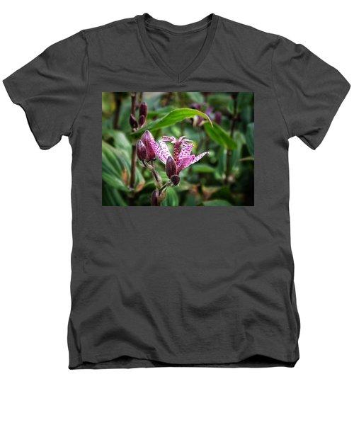 Liliaceae Men's V-Neck T-Shirt
