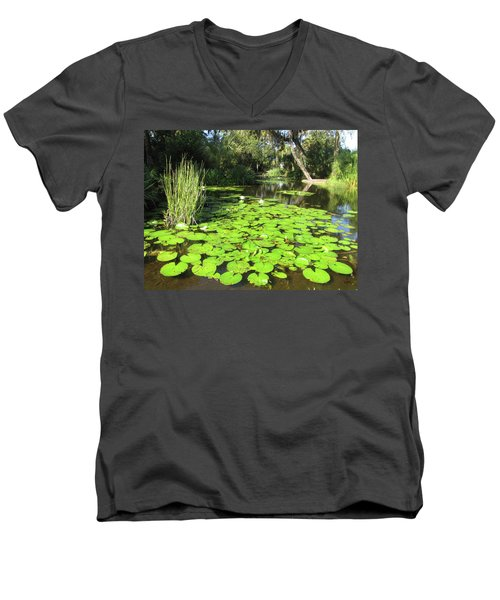 Lilies Of Bok Gardens Men's V-Neck T-Shirt