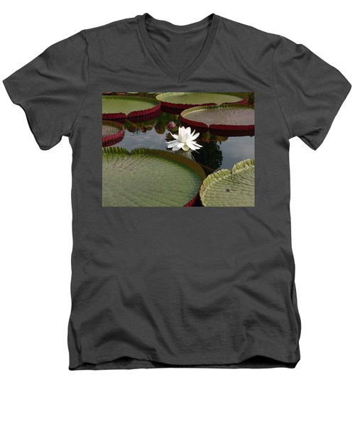 Lily Men's V-Neck T-Shirt by David Bearden