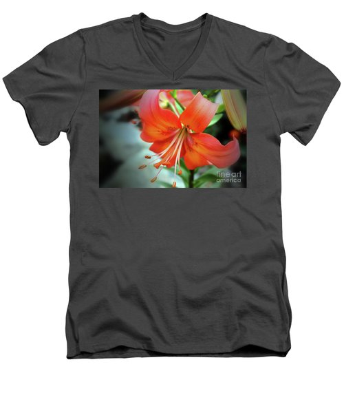 Lily Love Men's V-Neck T-Shirt