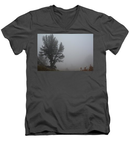 Men's V-Neck T-Shirt featuring the photograph Limber Pine In Fog by Jenessa Rahn