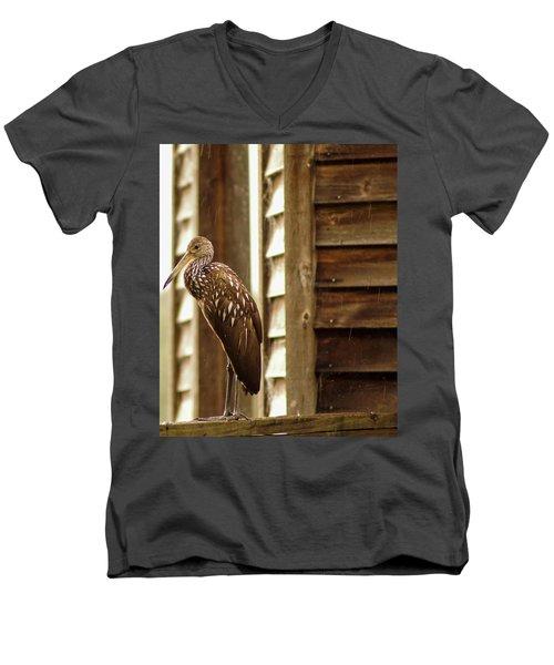 Limpkin Men's V-Neck T-Shirt