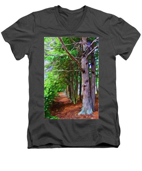 Lincoln's Path Men's V-Neck T-Shirt