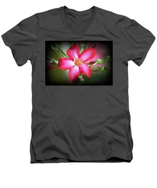 Lindsy Men's V-Neck T-Shirt