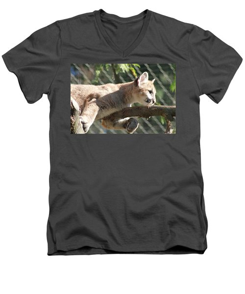 Men's V-Neck T-Shirt featuring the photograph Lion Around by Laddie Halupa
