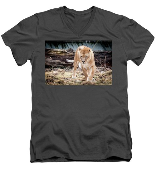 Men's V-Neck T-Shirt featuring the photograph Lion Eyes by John Wadleigh