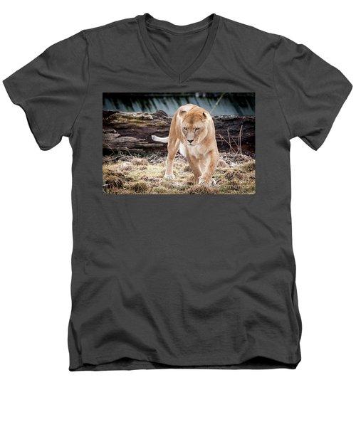 Lion Eyes Men's V-Neck T-Shirt