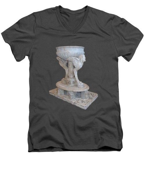 Lion Guardian Men's V-Neck T-Shirt