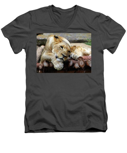Lion Resting Men's V-Neck T-Shirt by Inspirational Photo Creations Audrey Woods