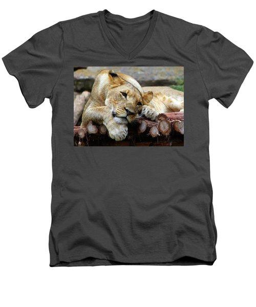 Lion Resting Men's V-Neck T-Shirt