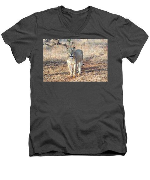 Lioness In Kruger Men's V-Neck T-Shirt by Pravine Chester