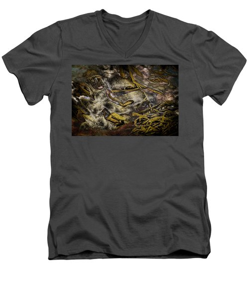 Listening To The Semifrozen Marsh Men's V-Neck T-Shirt