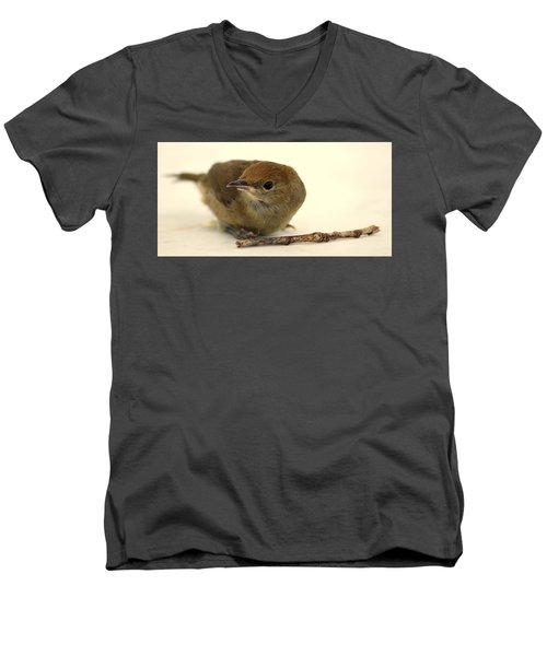 Little Bird 2 Men's V-Neck T-Shirt