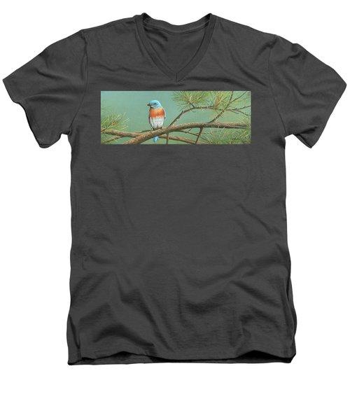 Little Boy Blue Men's V-Neck T-Shirt
