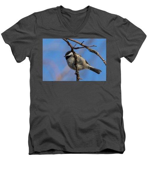 Little Chickadee Men's V-Neck T-Shirt