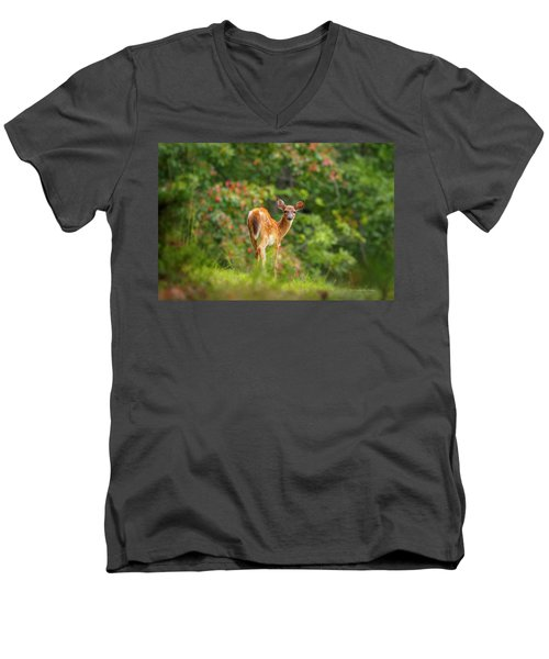 Little Fawn Men's V-Neck T-Shirt