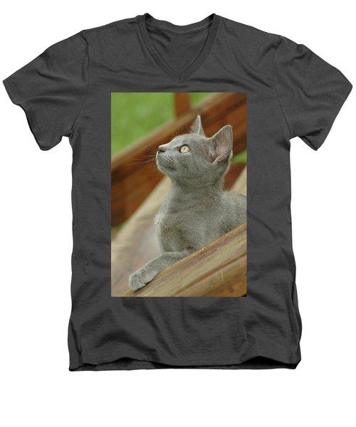 Little Gray Kitty Cat Men's V-Neck T-Shirt