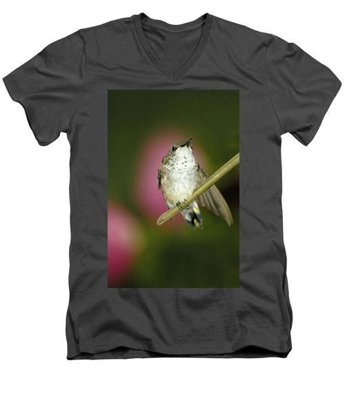 Little Humming Bird Men's V-Neck T-Shirt