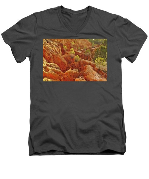 Little Pine Trees Growing On The Valley Cliffs Men's V-Neck T-Shirt
