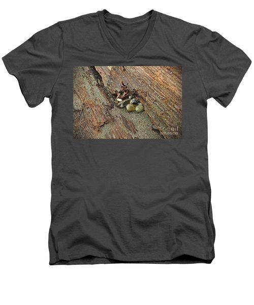 Little Rocks Men's V-Neck T-Shirt by Cendrine Marrouat