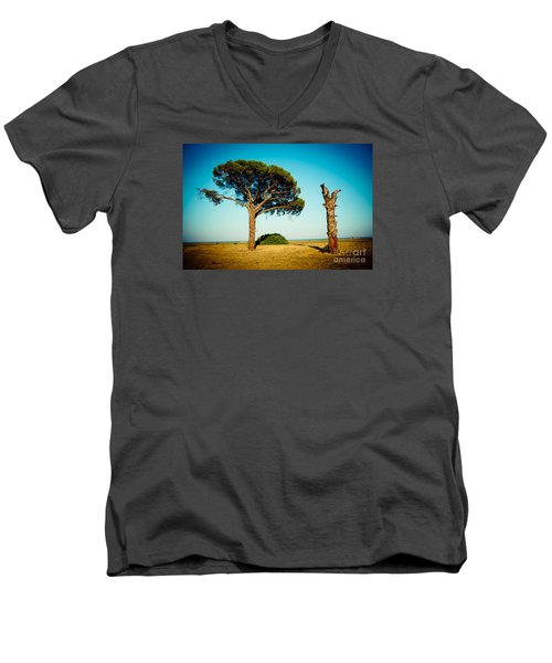 Live And Dead Tree At Seacoast Men's V-Neck T-Shirt