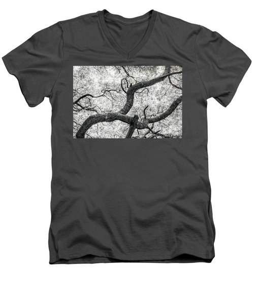 Live Oak Abstract 1 Men's V-Neck T-Shirt