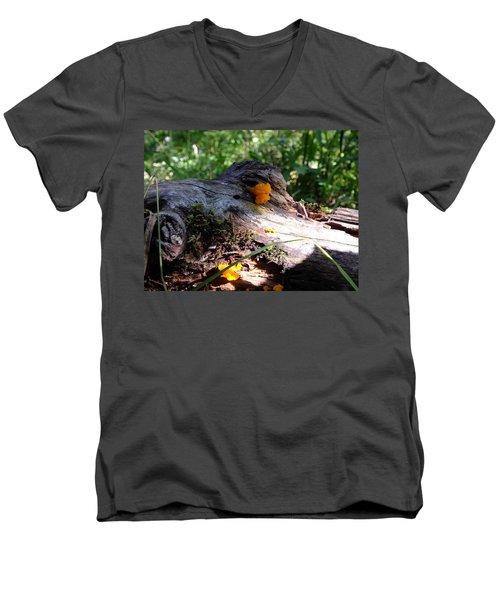 Live Sculpture Men's V-Neck T-Shirt
