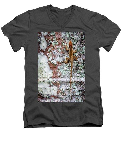 Lizard And Lichen On Brick Men's V-Neck T-Shirt